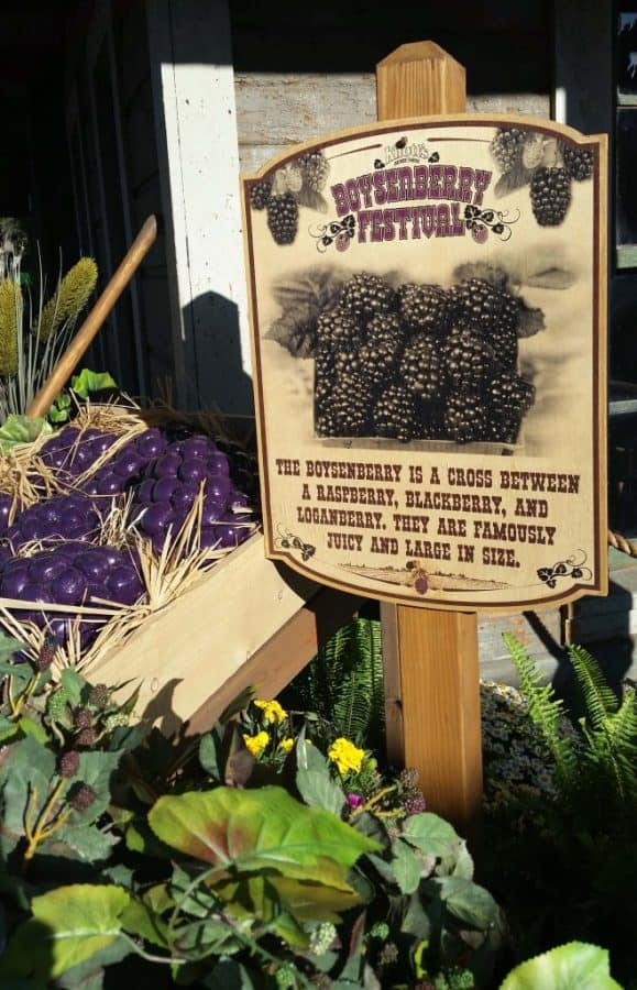 Knott's Boysenberry Festival is Back Again for Its Third Year!