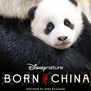 The Latest by Disneynature: Born in China, Opening on Earth Day