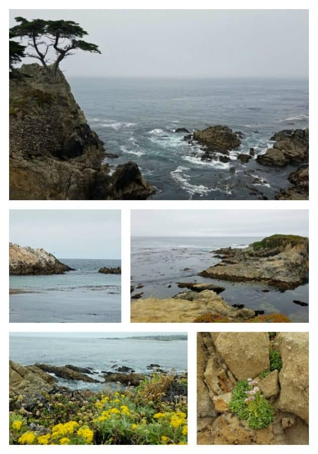 coastal california road trip