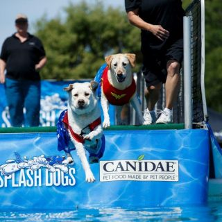 Win Tickets for the America's Family Pet Expo for April 27!