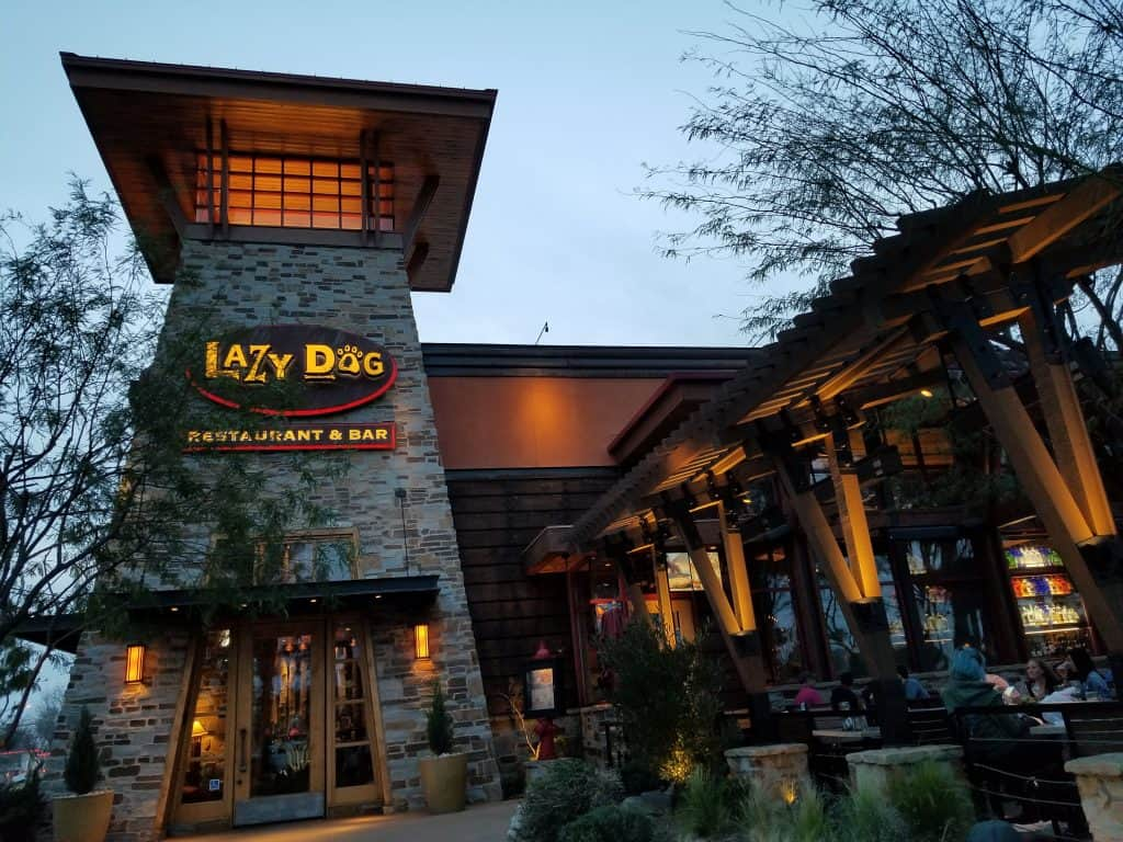 lazy dog spring menu