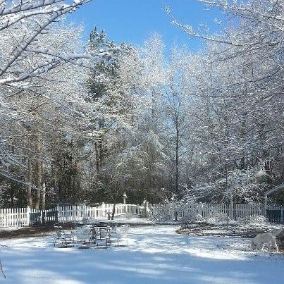 snow in South Carolina
