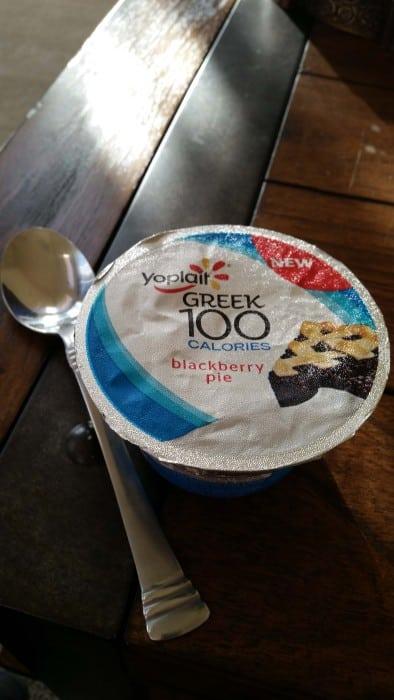 Yoplait Greek 100