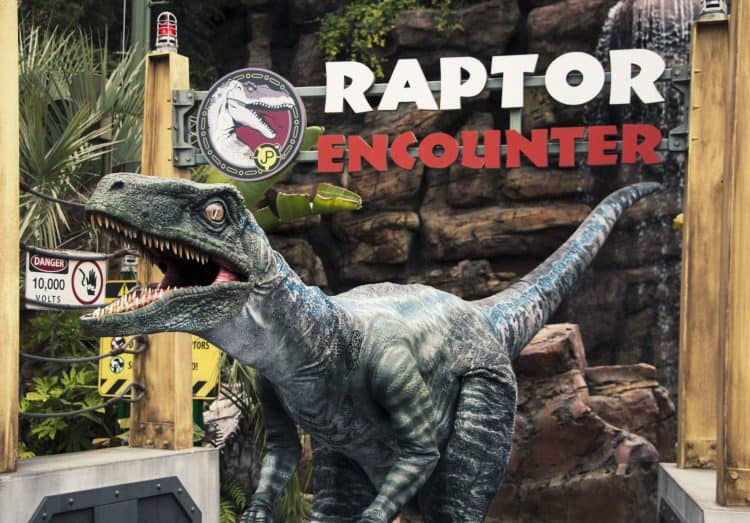 raptor encounter