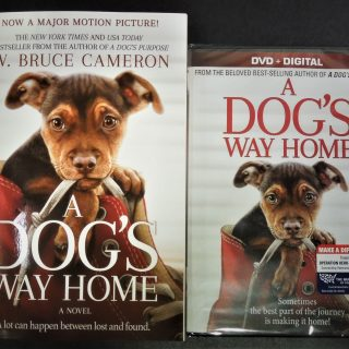 dog's way home book and movie giveaway
