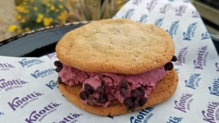 boysenberry ice cream sandwich