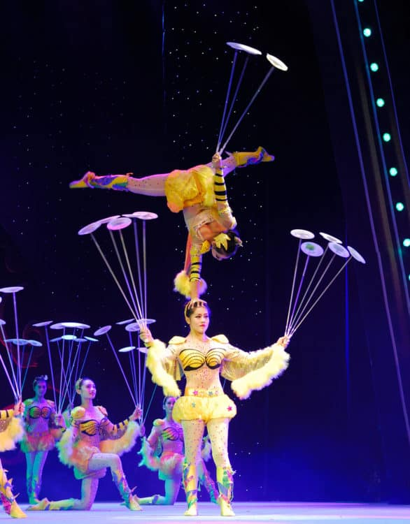 cirque mei at segerstrom center for the arts
