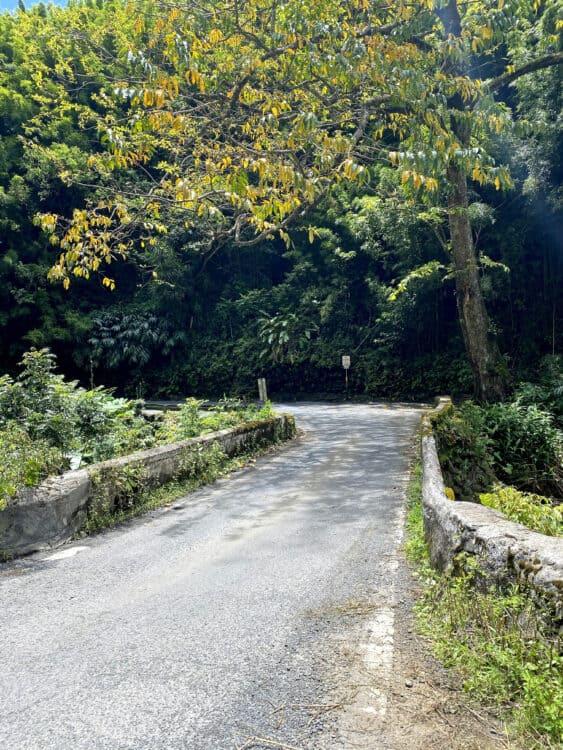 one lane bridge on road to Hana
