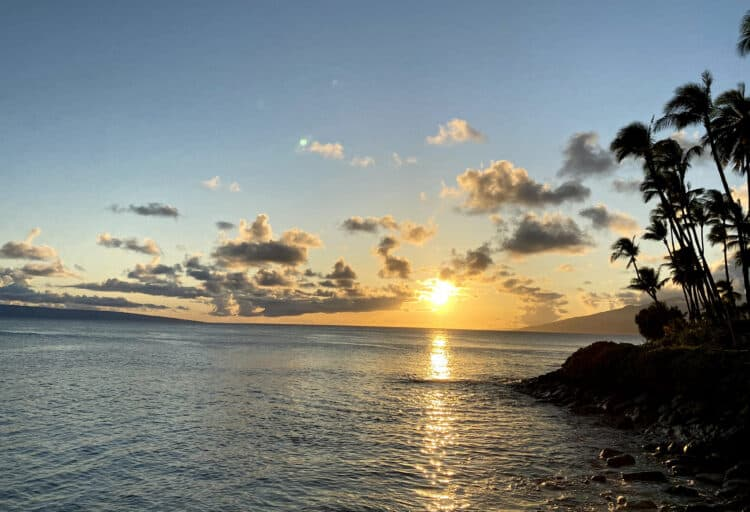travel to maui during covid