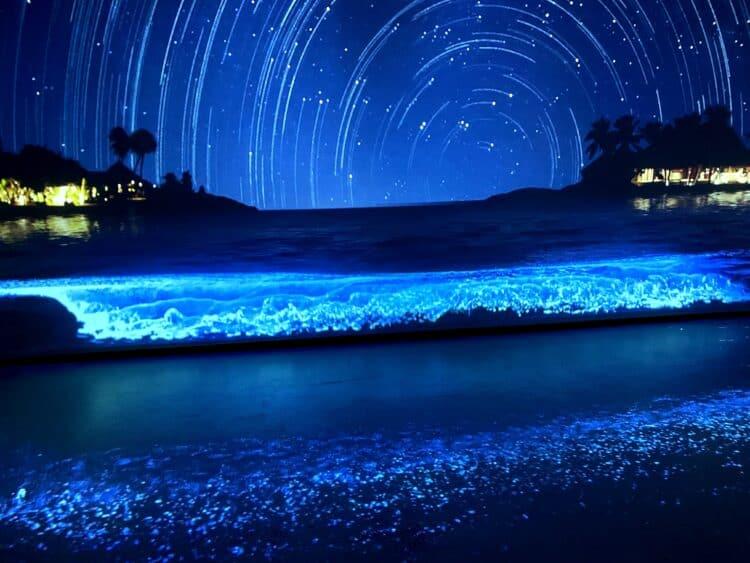 bioluminescence at sea life aquarium legoland California