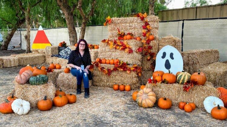 pumpkin patch at Temecula terror